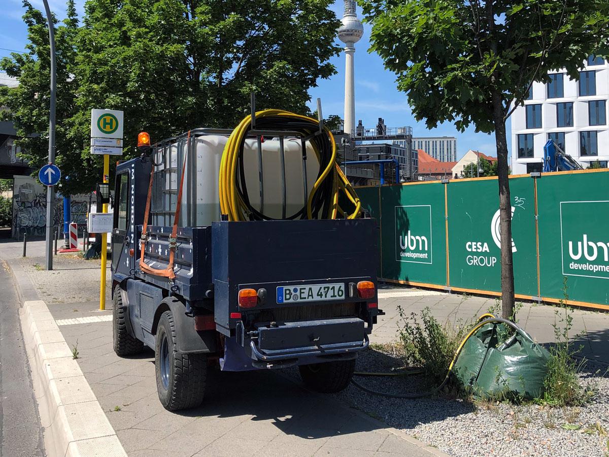 Bewässerung eines Straßenbaums in Berlin durch die IM NORDEN GmbH