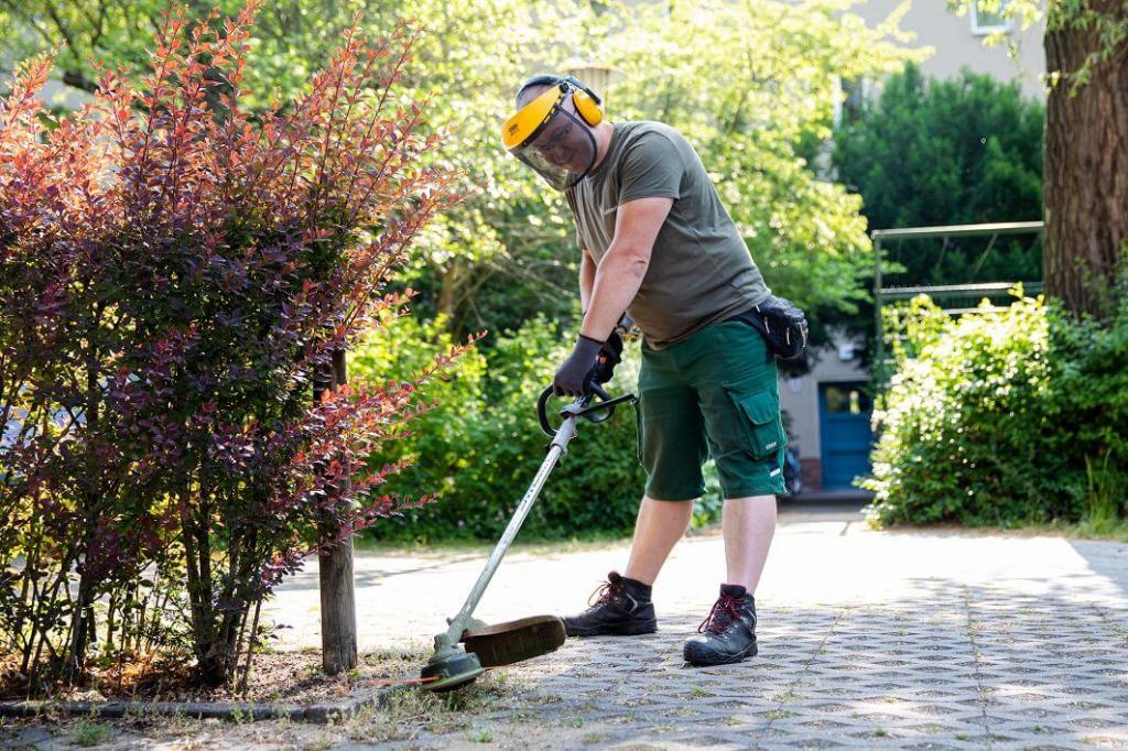 IM NORDEN GmbH: Gartenpflege
